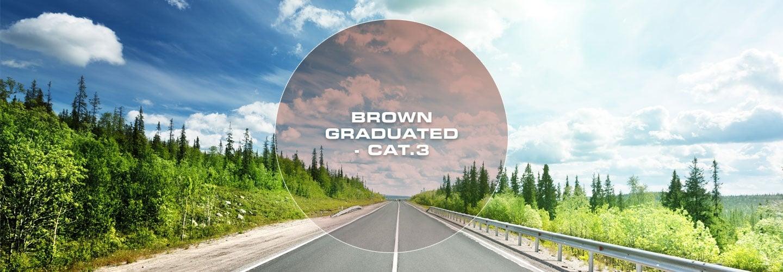 Brown Grad Cat 3