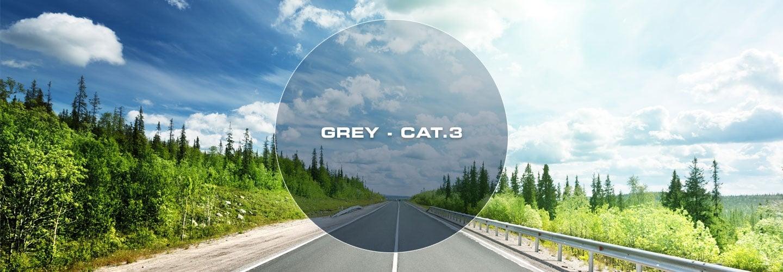 Grey Cat 3